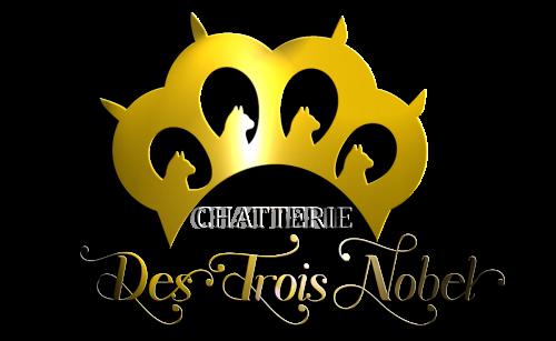 logo_final_02